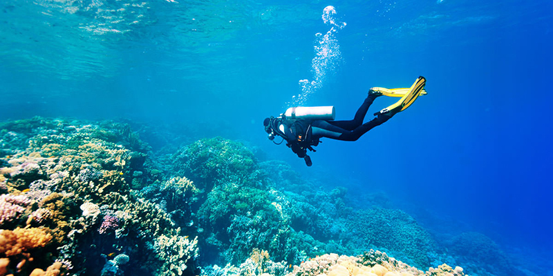 What is the Equipment Required for Snorkeling?